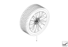 Winter complete wheel double spoke 116