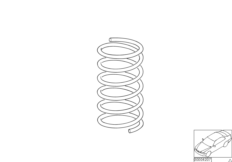Rear coil spring